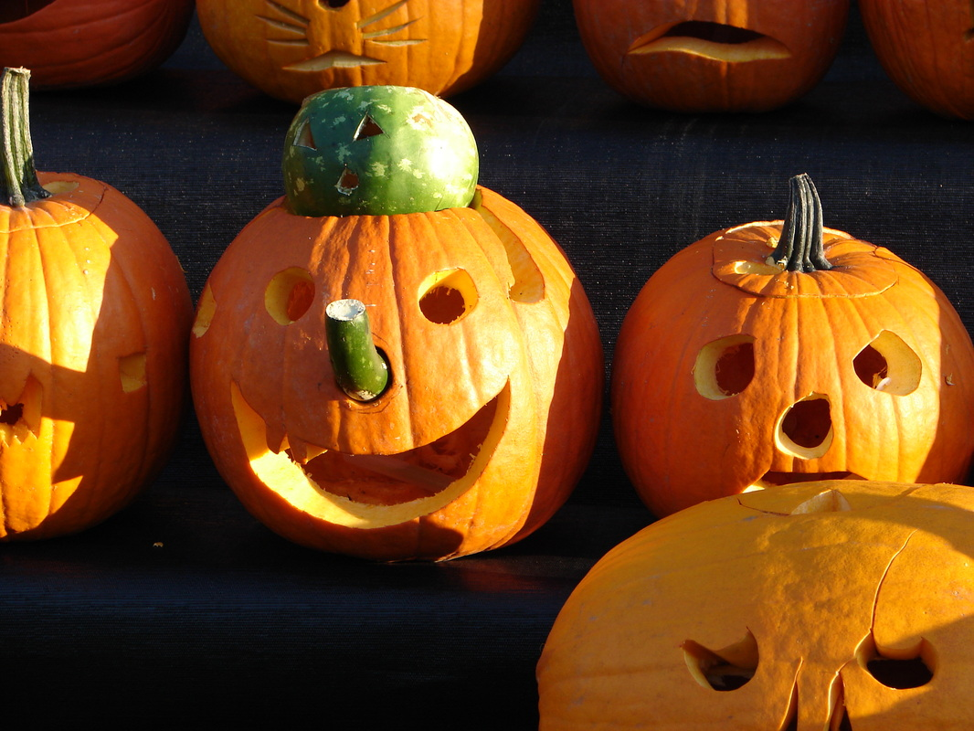 Toddler dies after bounce pad incident at nebraska pumpkin patch.