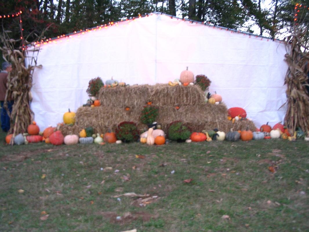 Neeley farms pumpkins & gourds lancaster, oh.
